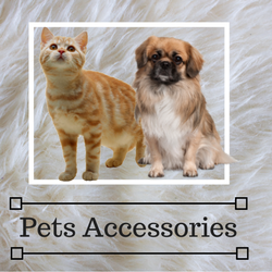 Gentryhive Online Shopping store Pets Accessories